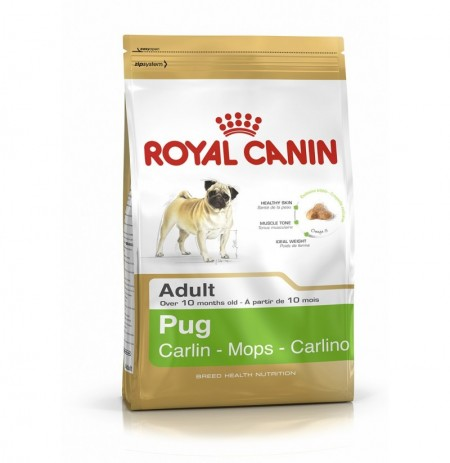 Royal canin carlino adulto