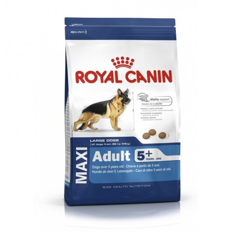 Royal canin maxi adult +6