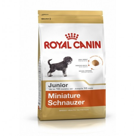 Royal canin schnauzer miniatura junior
