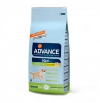 Advance maxi junior chicken & rice (pollo y arroz)