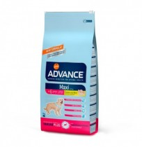 Advance maxi senior chicken & rice (pollo y arroz)