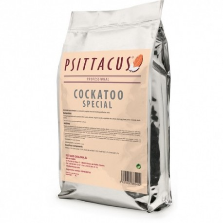 Psittacus cockatoo special