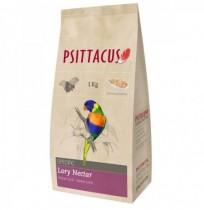 Psittacus néctar loris