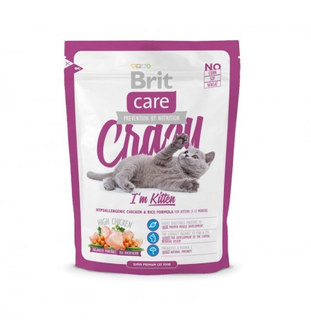 Brit care cat crazy i'm kitten (gatitos)