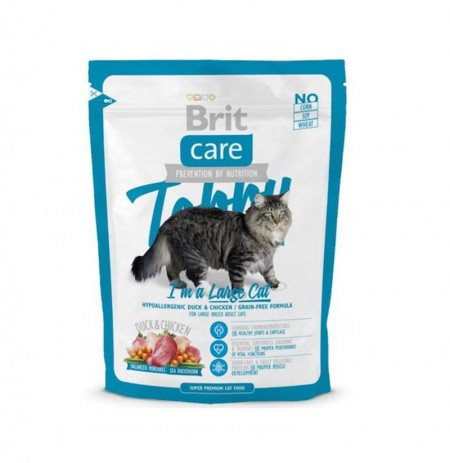 Brit care cat tobby i'm a large cat (gato raza grande)