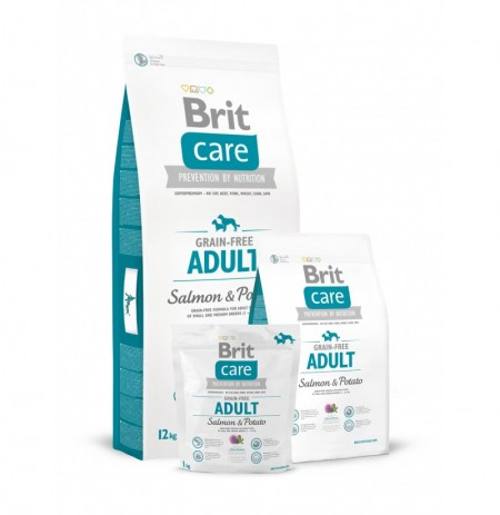 Brit care grain free adult (salmón y patata)