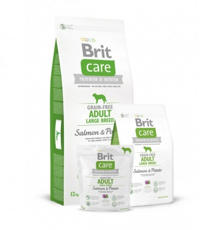 Brit care grain free adult large breed (salmón y patata)
