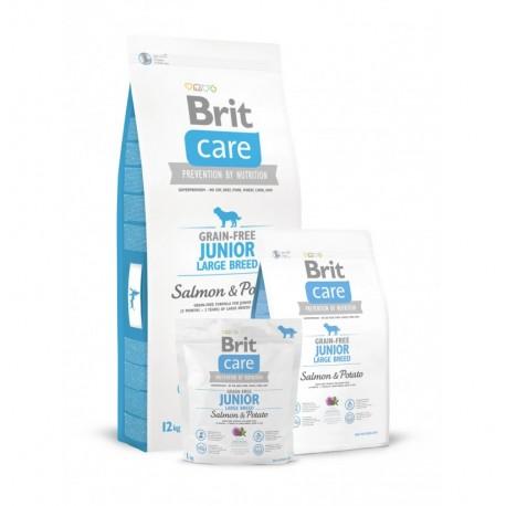Brit care grain free junior large breed (salmón y patata)