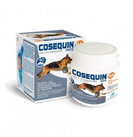 Cosequin taste ha condroprotector