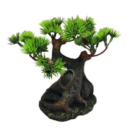 Duvo bonsai decoración acuario