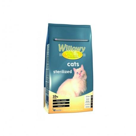 Willowy gold cats sterilized (gato esterilizado)