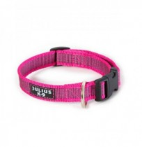 Collar julius-k9 rosa - color & gray