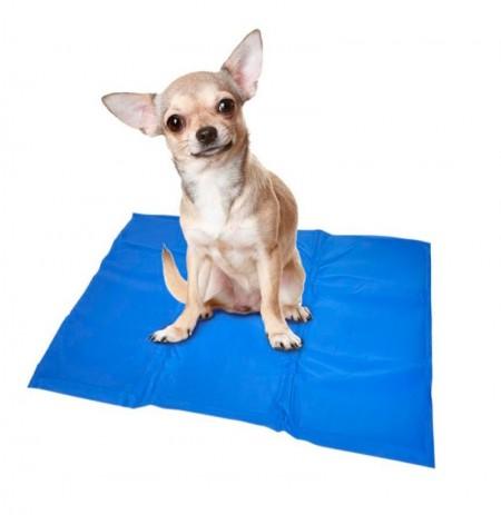 Alfombra refrescante duvo para perros TodoMascota.es