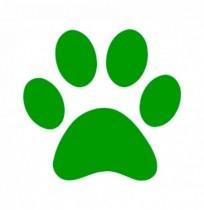 ADALCO Amigos de los Animales Callejeros Alcocebre