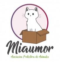 Miaumor Asociación Protectora de Animales