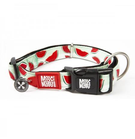Max & molly collar watermelon para perros
