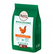 Nutro wholesome essentials pollo para perros medianos